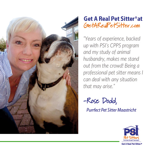 use a professional pet sitter pet sitters international