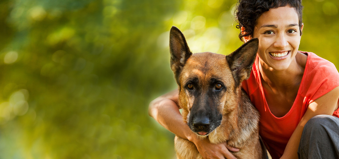 Pet Sitters International 1 Source For Professional Pet Sitters