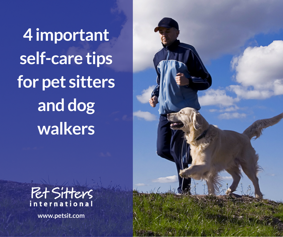4 important self care tips for pet sitters and dog walkers