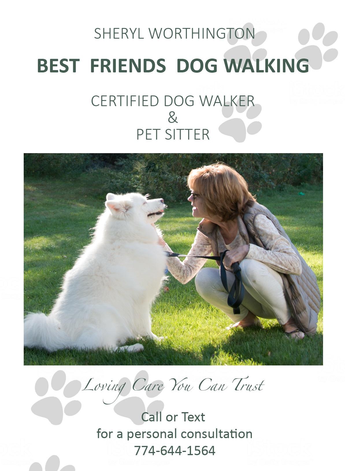 Best Friends Dog Walking