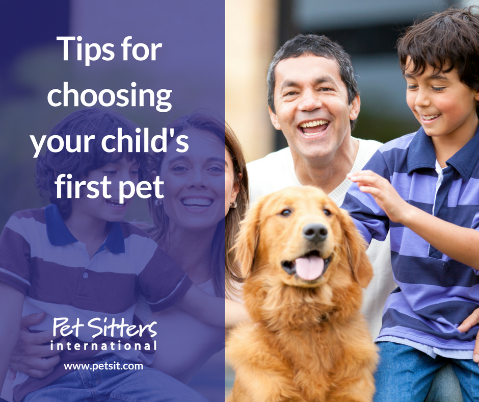 Choosing Your Child S First Pet