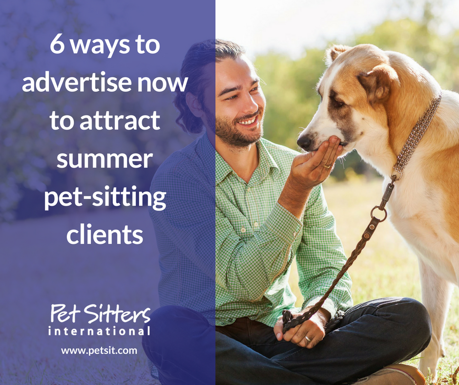 6 ways to advertise now to attract summer pet sitting clients