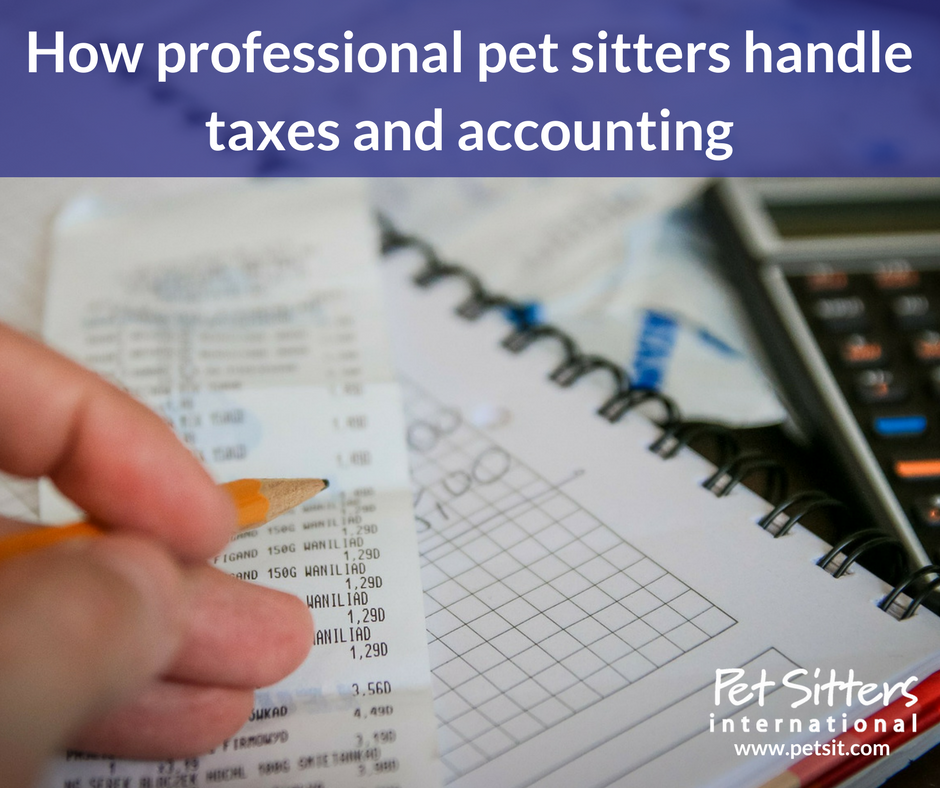 How professional pet sitters handle taxes and accounting