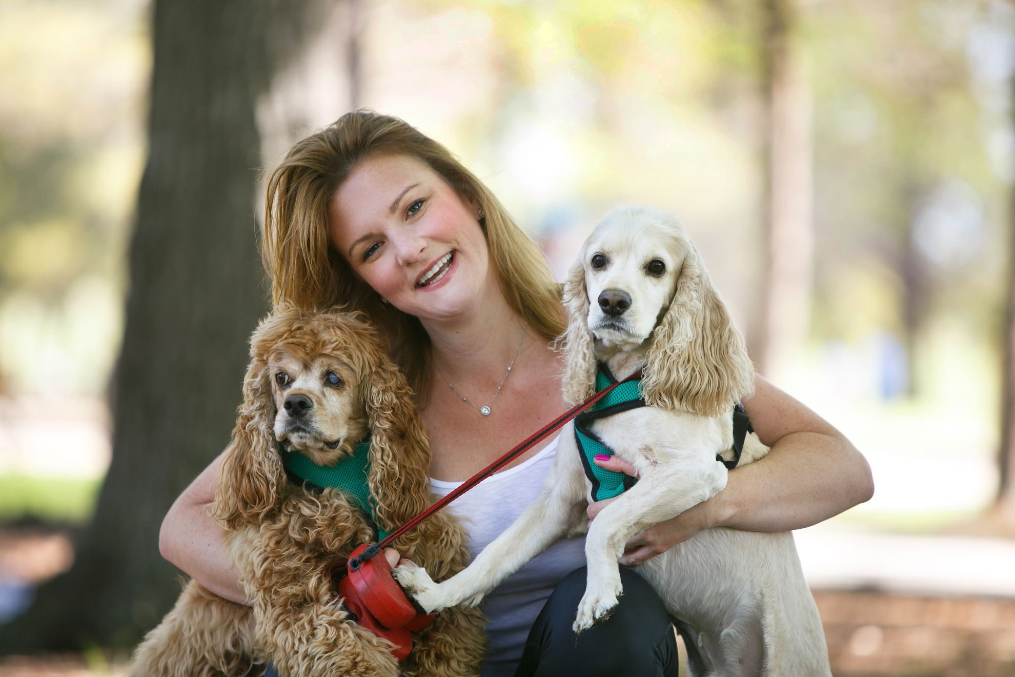 houston pet services - craigslist
