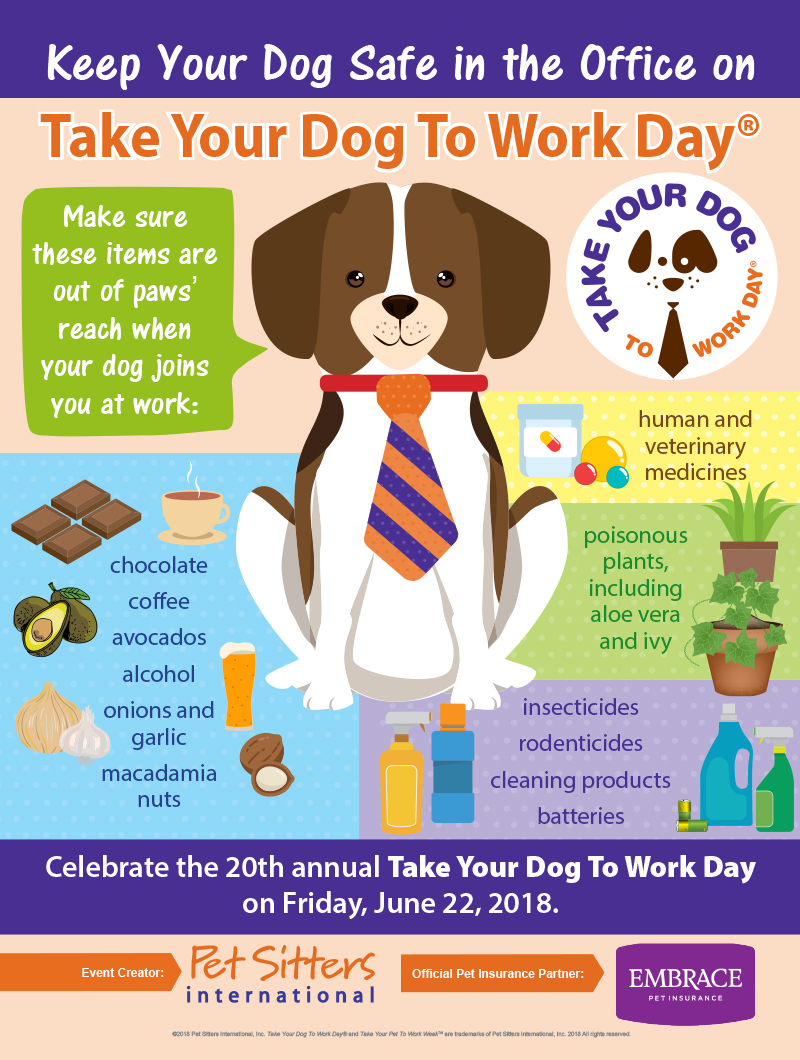 National Take Your Dog To Work Day 2018 Canada