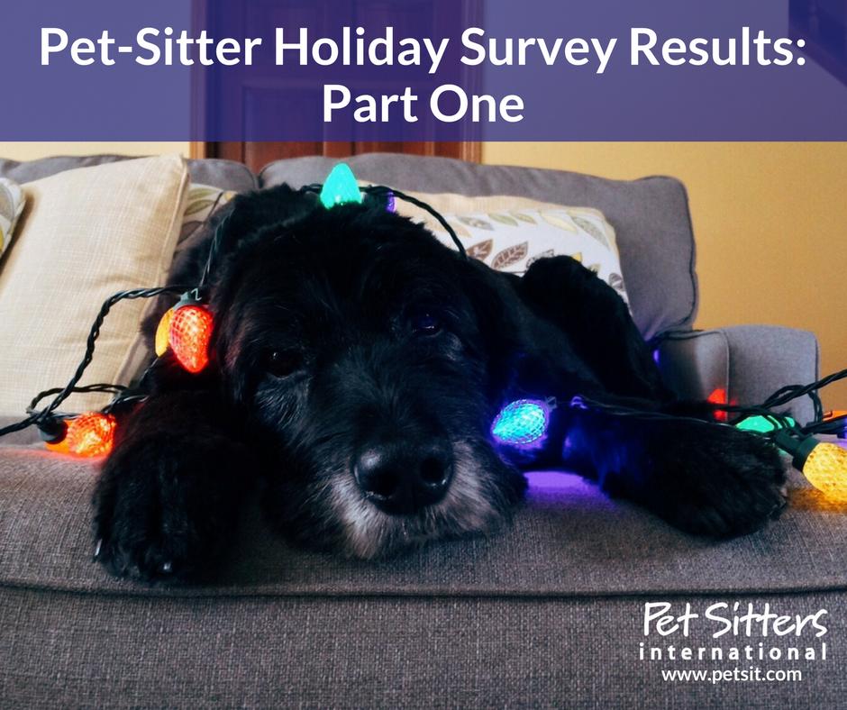 Pet Sitter Holiday Survey
