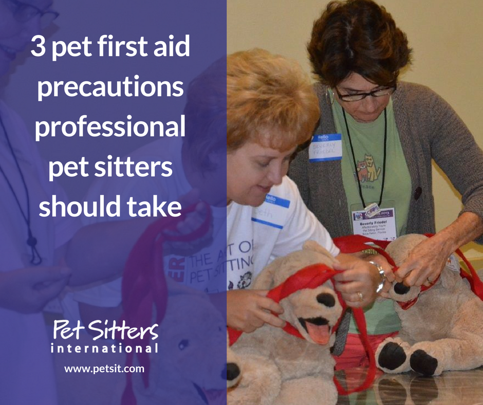 3 Pet First Aid Precautions Professional Pet Sitters Should Take
