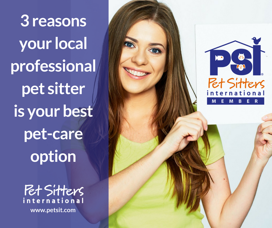 3 reasons your local professional pet sitter is your best pet care